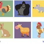 Ejercicios para practicar el vocabulario de los animales