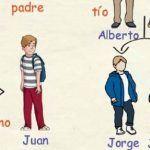 Aprende y practica el vocabulario de la familia y los estados civiles