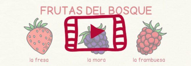 Vídeo sobre las frutas y los frutos