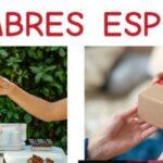 Clase en directo en YouTube sobre las costumbres de los españoles
